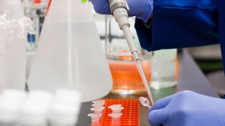 Hangi Test Hangi Hastanede Yapılıyor Öğrenin